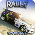 RALLY GYMKHANA DRIFT