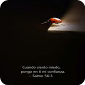 Frases con Imágenes de Jesus icon