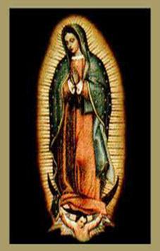 Virgen de Guadalupe de Mexico poster