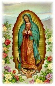 Virgen de Guadalupe de Mexico screenshot 2