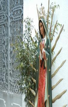 Virgen de Guadalupe Fotos screenshot 3