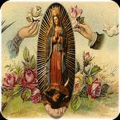 Virgen de Guadalupe mas Grande icon