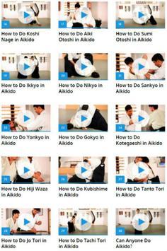 Aikido Lessons apk screenshot