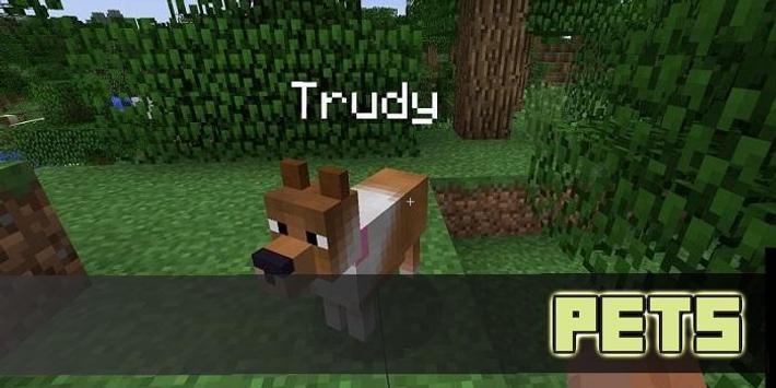 Pet MOD For MCPE screenshot 1