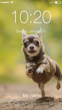 Cute Chihuahua Husky Dog Puppy Screen Lock screenshot 2