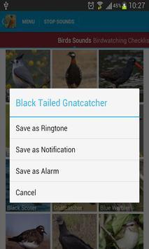 American Redstart Bird Songs screenshot 4