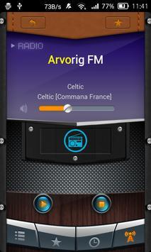 Radio Celtic screenshot 3