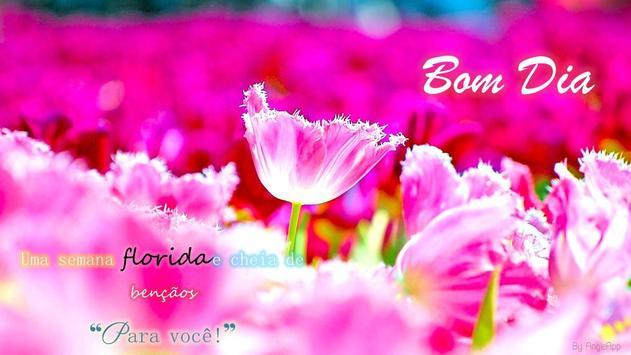 Imagens com Frases de Bom Dia AMOR poster