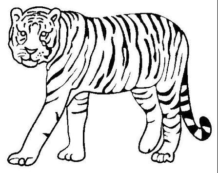 Animal Coloring Book screenshot 8