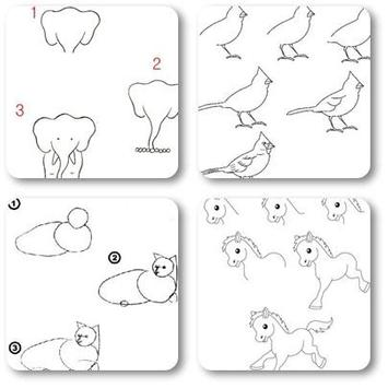 Animal Drawing Tutorial apk screenshot