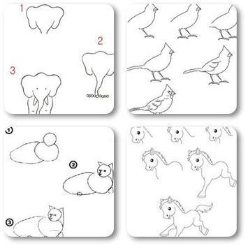 Animal Drawing Tutorial screenshot 3