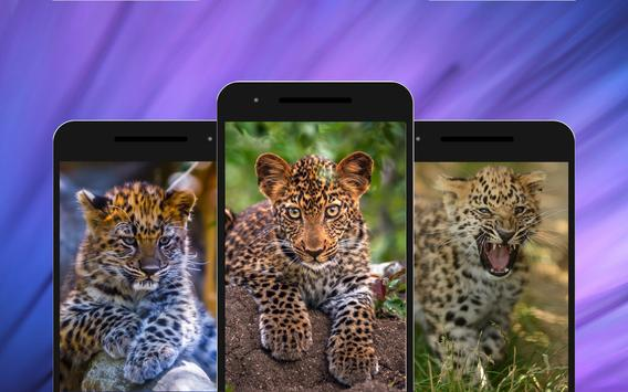 Leopard Wallpapers screenshot 1