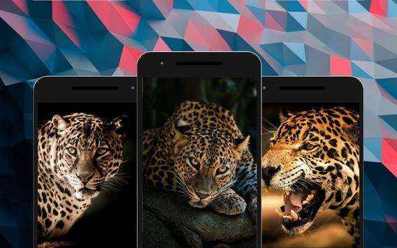 Leopard Wallpapers screenshot 3