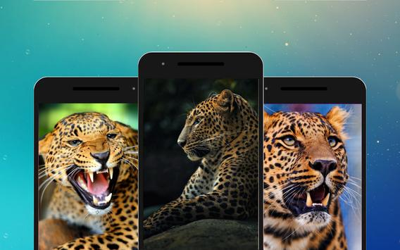 Leopard Wallpapers screenshot 5