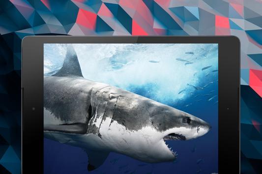Shark Wallpapers screenshot 20