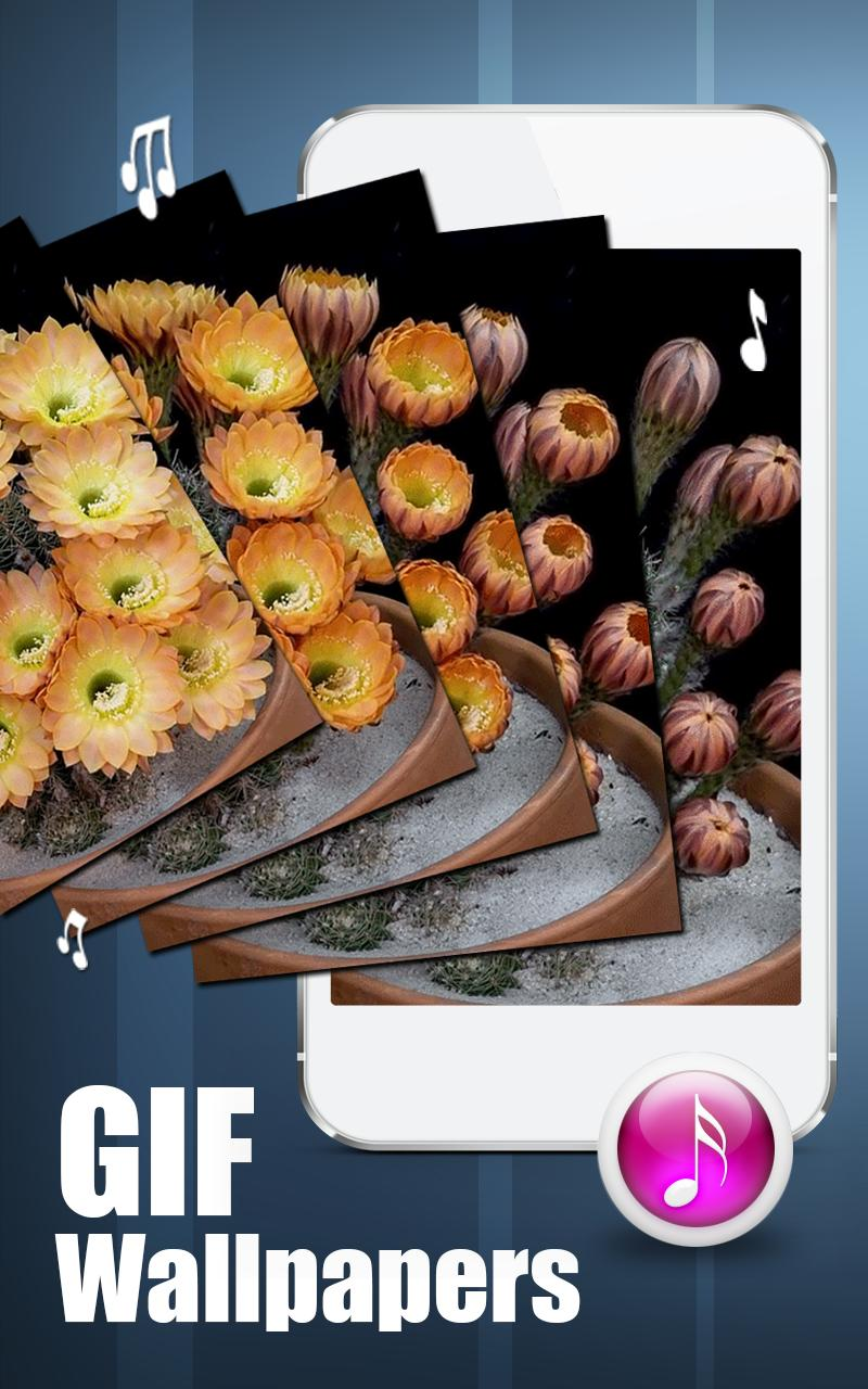 Animated GIF Wallpaper Live 3D For Android APK Download