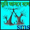 তুমি আসবে বলে,,,,,,sms icon
