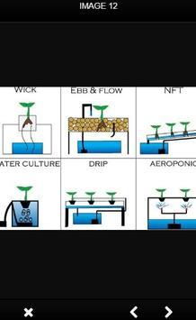 Aquaponic And Hydroponic apk screenshot
