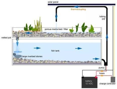 Aquaponics Gardening System screenshot 3