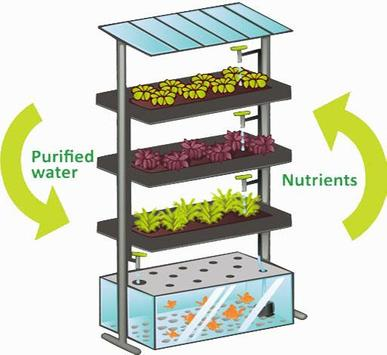 Aquaponics Gardening System screenshot 2