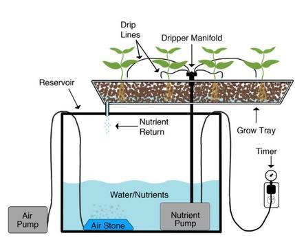 Aquaponics Gardening System screenshot 6