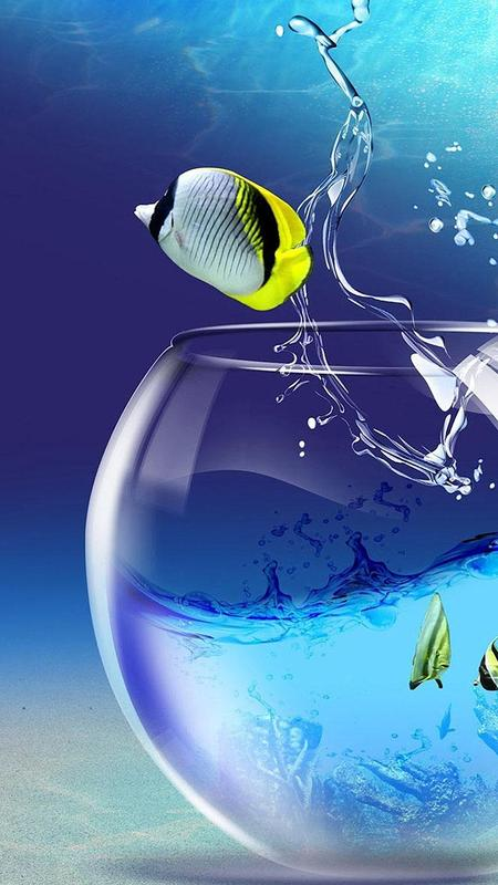 Akuarium Hidup Wallpaper Gambar Ikan Bergerak Apk Download Gratis Personalisasi Apl Untuk