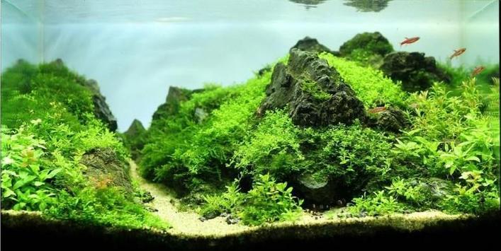 Aquascape Design screenshot 11