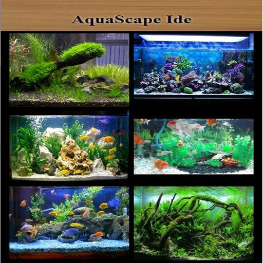 Aquascape Idea For Android Apk Download
