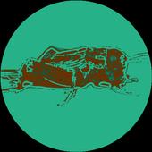 Social Cricket (Unreleased) icon