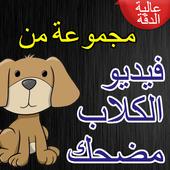 فيديو الكلاب مضحك icon