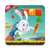 Bunny Peter  :Rabbit Adventure icon