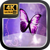 Buterfly Wallpaper HD icon