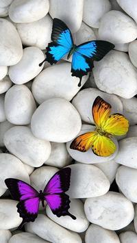 Mariposas Fondos de Pantallas con Movimiento ღ captura de pantalla 1