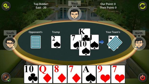 29 Card Game screenshot 12