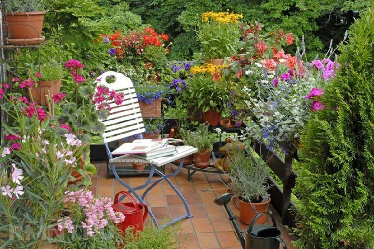 Balcony Garden Design Ideas for Android - APK Download