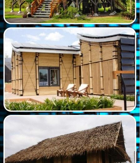 Bamboo House Design For Android Apk Download