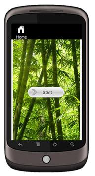 Bamboo screenshot 1