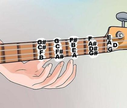 Bass Guitar Chord screenshot 2