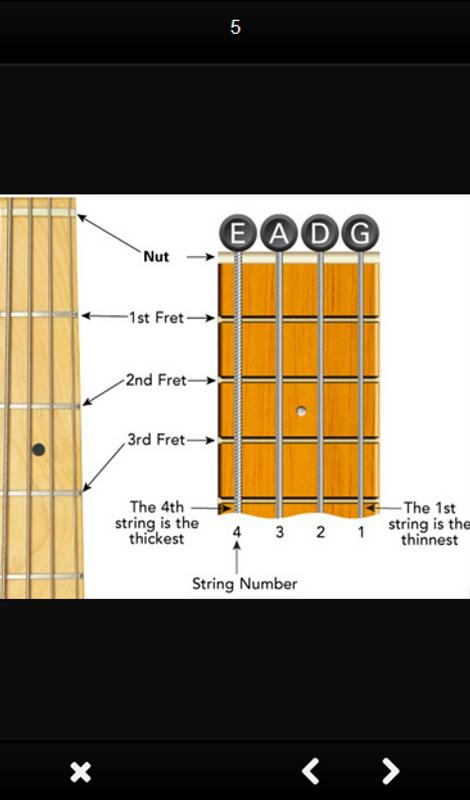 Bass guitar chords APK Download - Free Lifestyle APP for Android ...