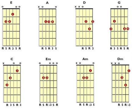 Bass Guitar Chords screenshot 5