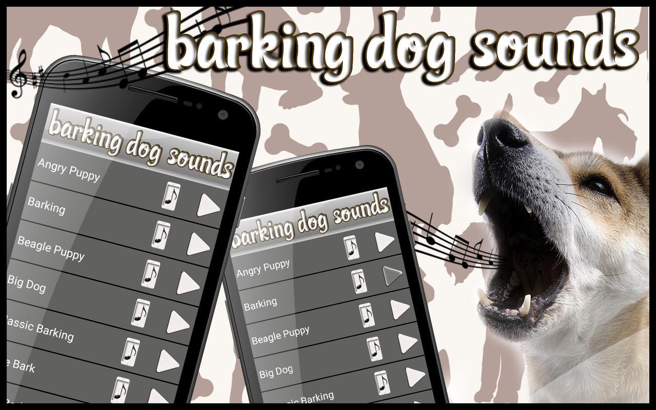Suara Anjing Menggonggong for Android - APK Download