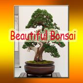 Beautiful Bonsai icon