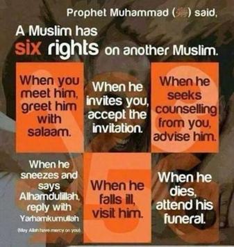 Beauty of Islam screenshot 3