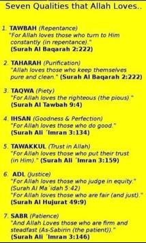Beauty of Islam screenshot 2