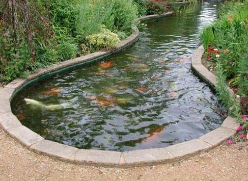 Fish Pond Designs Best fish pond designs apk download free lifestyle app for android best fish pond designs poster best fish pond designs apk screenshot workwithnaturefo