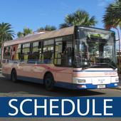 Bermuda Bus Schedule icon