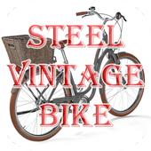 Steel Vintage Bike icon