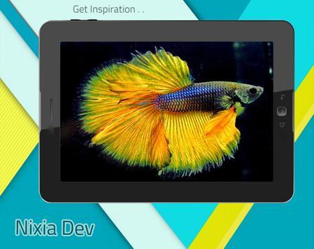 Betta Fish 3D Free screenshot 7