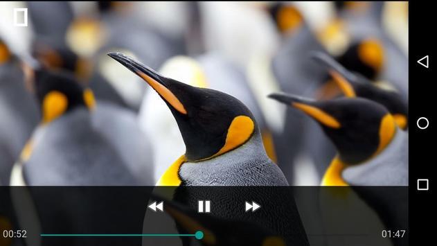 OGG Video Player HD apk screenshot