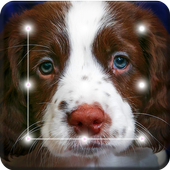 Dog Cute Spaniel Puppy Smart Screen Lock icon